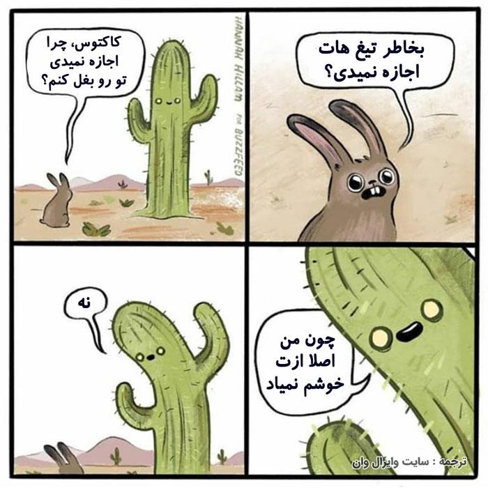کمیک فارسی: کاکتوس مسخره