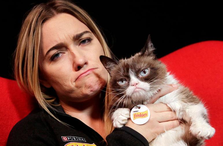 صاحب Grumpy Cat