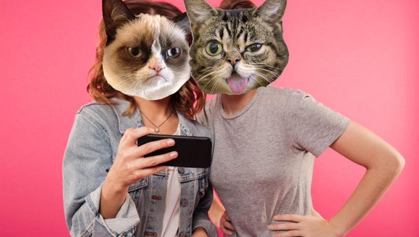 پوستر داستان گربه اخمو و لیل باب گربه