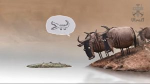 انیمیشن کوتاه مذاکره گاو ها بر سر یک تکه چوب از استودیوی BirdBox